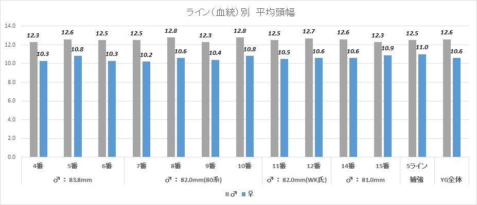 2015ライン(血統)別頭幅グラフ