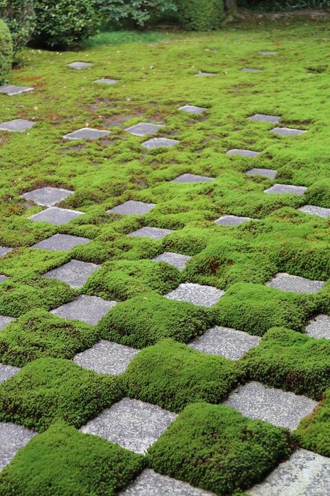 東福寺方丈八相庭園
