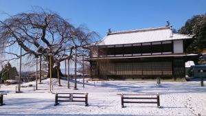 2_10舞台桜雪