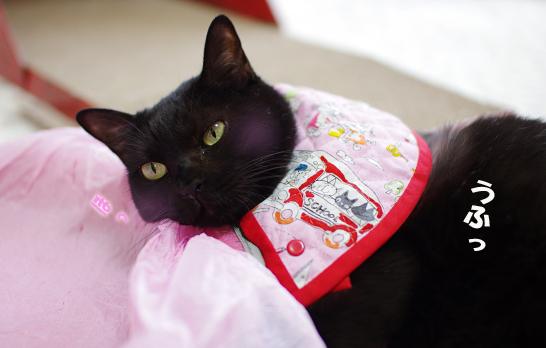 クーちゃん乙女だからピンク大好きssのコピー