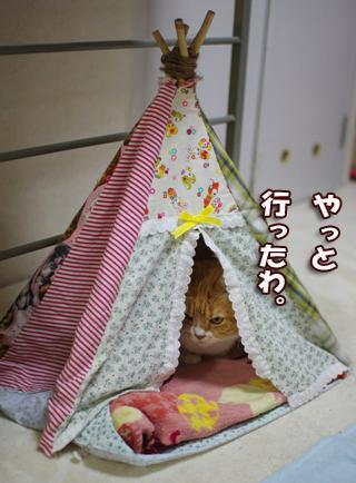 変形したテントの中407のコピー
