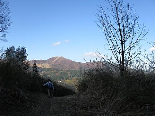 15_11_4_nagareo (124)(1)