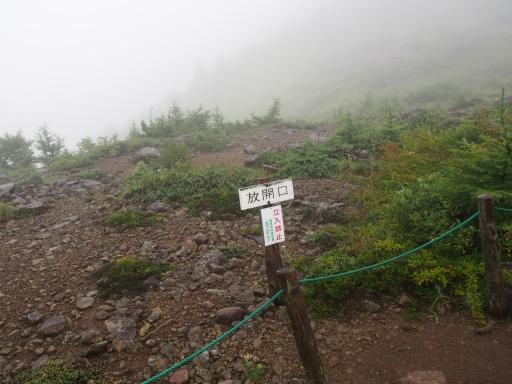 20150830・高峰高原ネオン05
