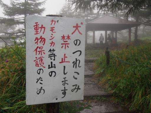 20150830・高峰高原ネオン02