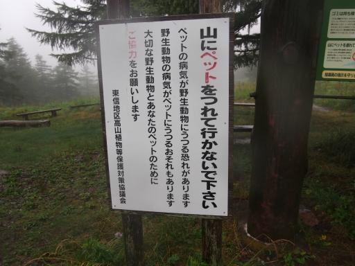 20150830・高峰高原ネオン11