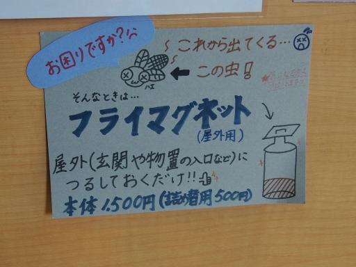 20150830・高峰高原ネオン17