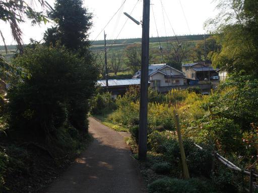 20151012・トトロ狭山湖2-10