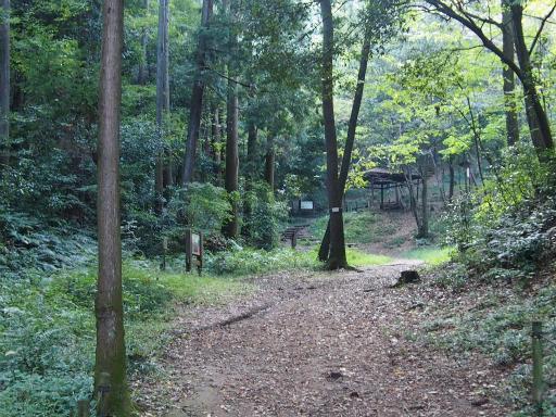 20151012・トトロ狭山湖2-08