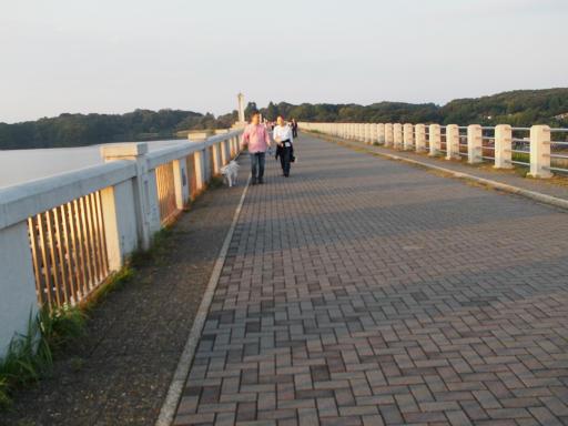 20151012・トトロ狭山湖2-20