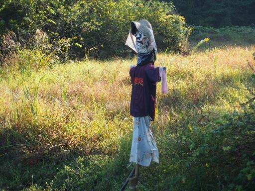20151018・菩提樹散歩・かかし1