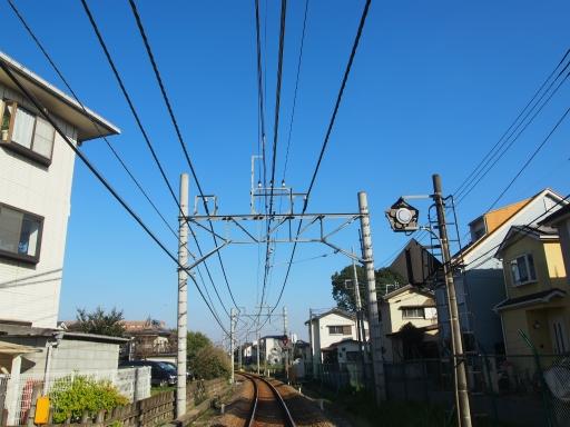 20151018・菩提樹散歩・空03