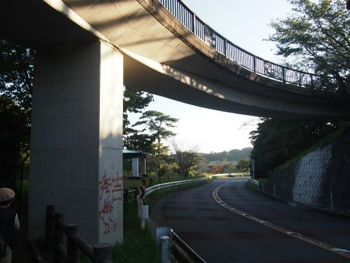 20151018・菩提樹散歩空07