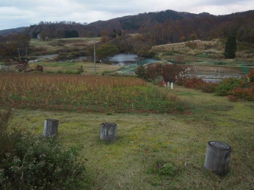 20151025・松之山夕景06・大厳寺高原
