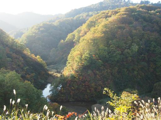 20151025・松之山予告10・丸山森林公園