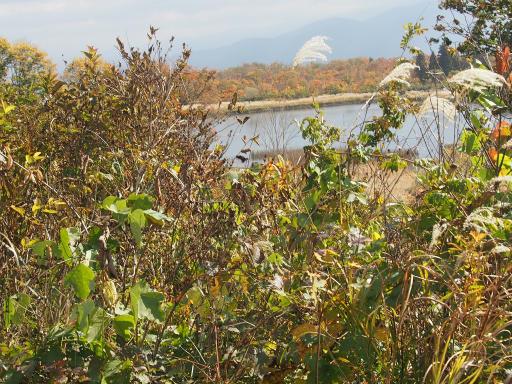 20151025・松之山1-13