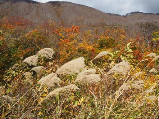 20151025・松之山1-20