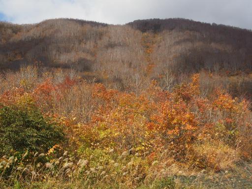 20151025・松之山1-19