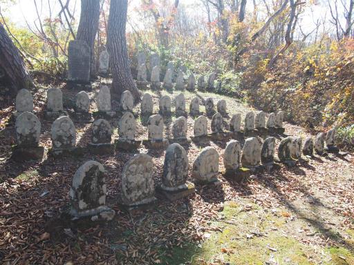 20151025・松之山6-14