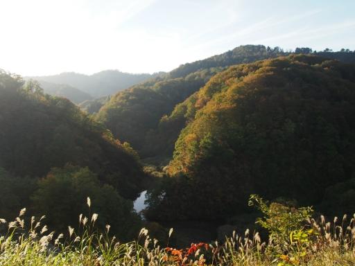 20151025・松之山空20・丸山森林公園・大