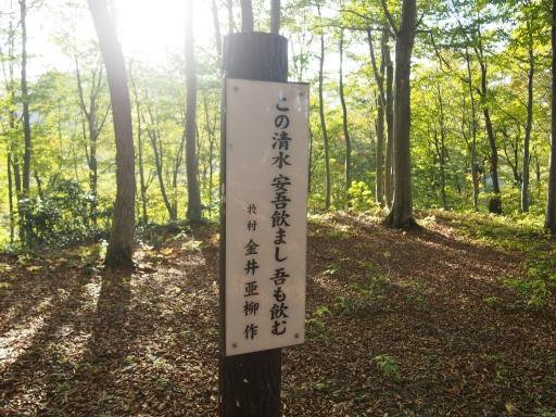 20151025・松之山8-05・中