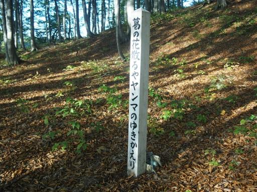 20151025・松之山8-04・中