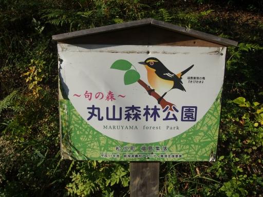 20151025・松之山8-01・中