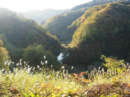 20151025・松之山8-08