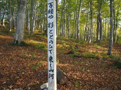 20151025・松之山8-13・中