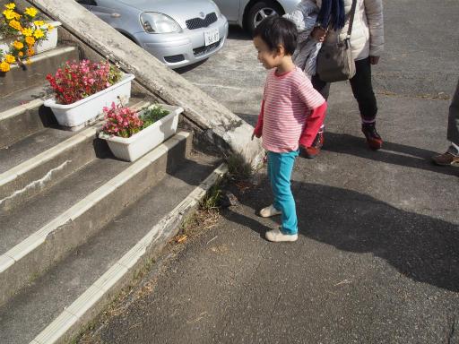 20151025・松之山カメさん18
