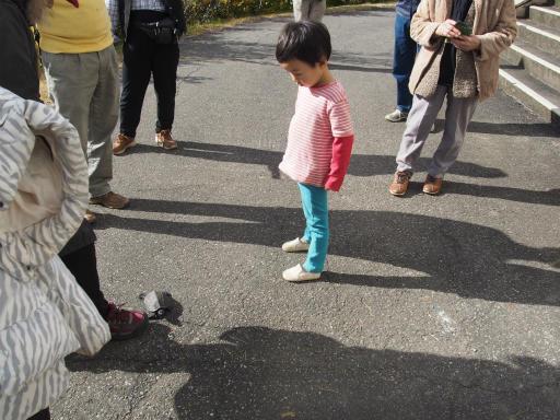 20151025・松之山カメさん23