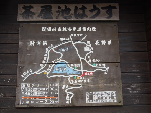 20151025・松之山ネオン01