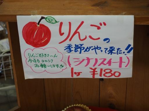 20151025・松之山ネオン16