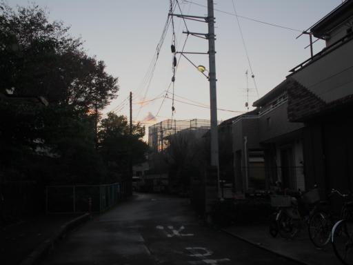 20151115・小春日和16・ライトトーン