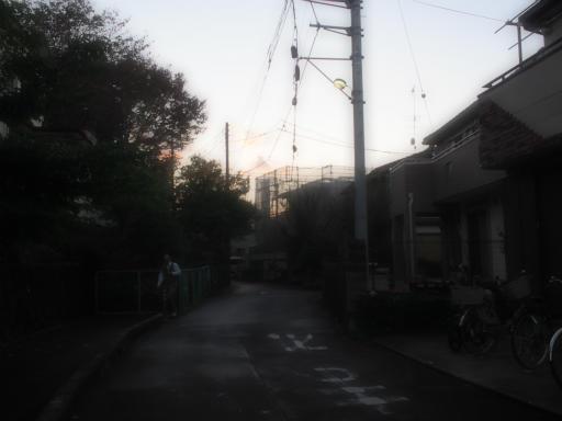 20151115・小春日和14・ファンタジックフォーカス