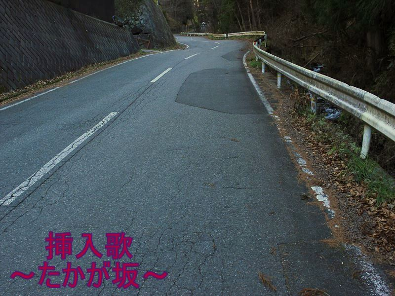 IMG_1056_20151205.jpg