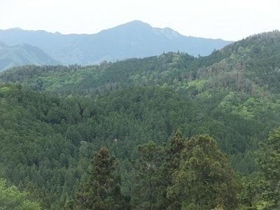 吉野山を見下ろす
