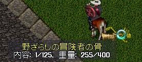WS003522.jpg