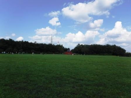 1戸田川緑地15