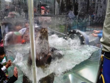 1上野動物園7