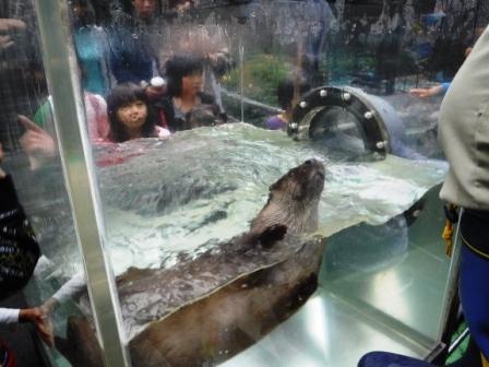 1上野動物園8