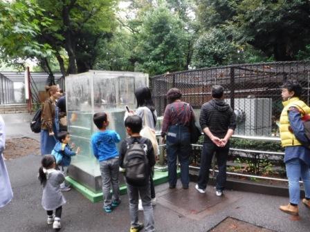 1上野動物園10