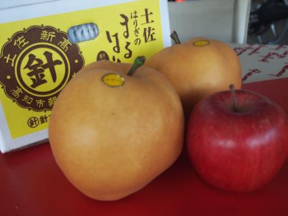 りんご (2)