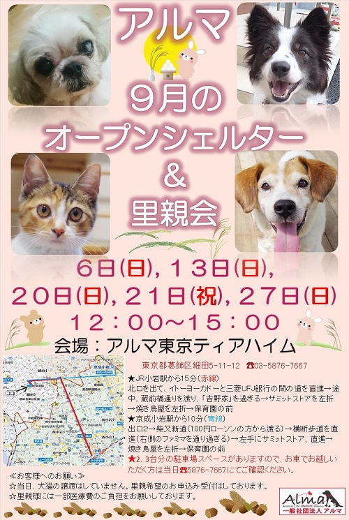 ALMA 9月オープンシェルター&里親会 お知らせ