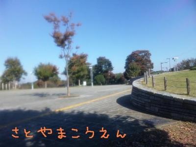 SH3J0309.jpg