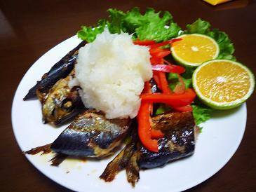 秋刀魚と鰯
