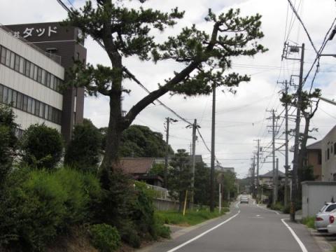 旧東海道 舞木町堂山