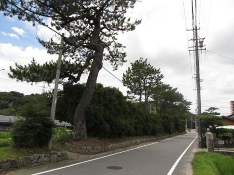 旧東海道 舞木町茶屋田・茶屋河原