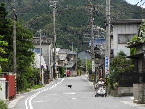 旧東海道 本宿町南中町・後畑