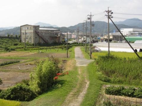 旧東海道 豊川市白鳥