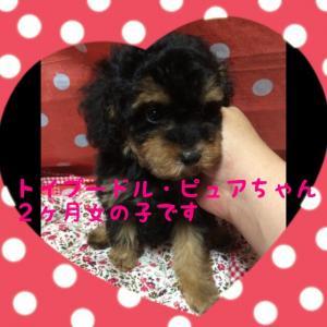 fc2blog_20151004101104e37.jpg